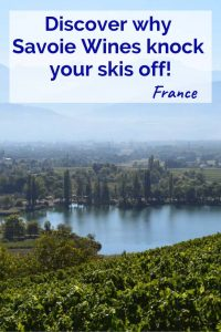 Discover why Savoie Wines knock your skis off! Pinterest