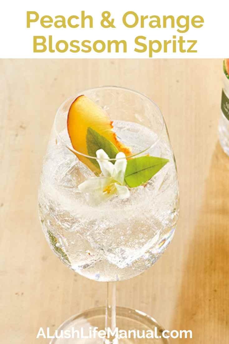 Ketel One Botanical Peach & Orange Blossom Spritz - Pinterest
