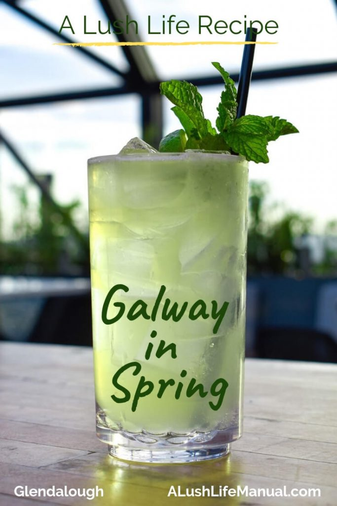 Galway in Spring by Glendalough Distillery - Pinterest