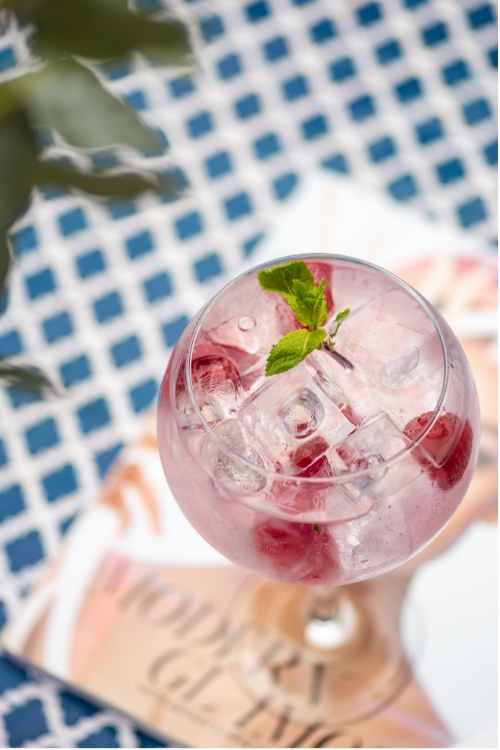 Pink Gin – Summer Cocktail