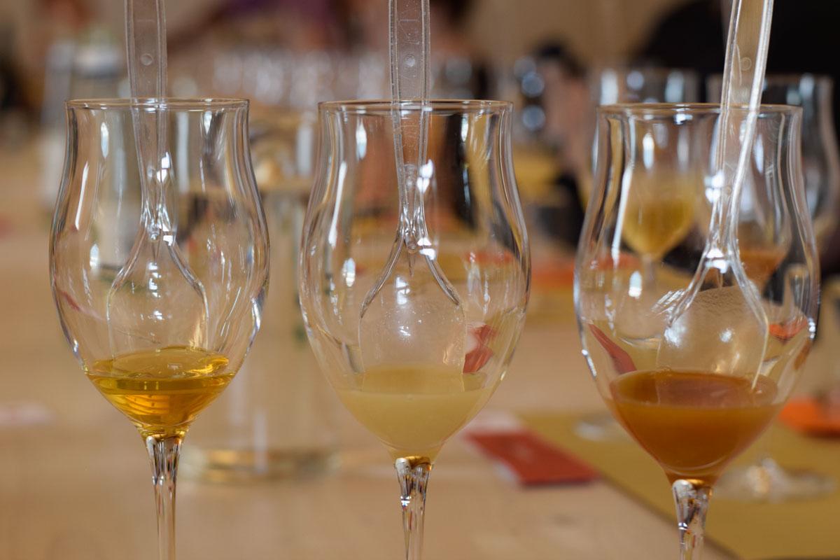 Drinking in Trentino - Mieli Thun