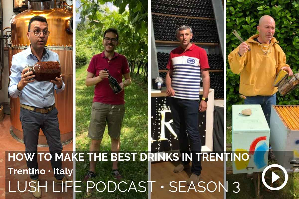 How to make the best drinks in Trentino