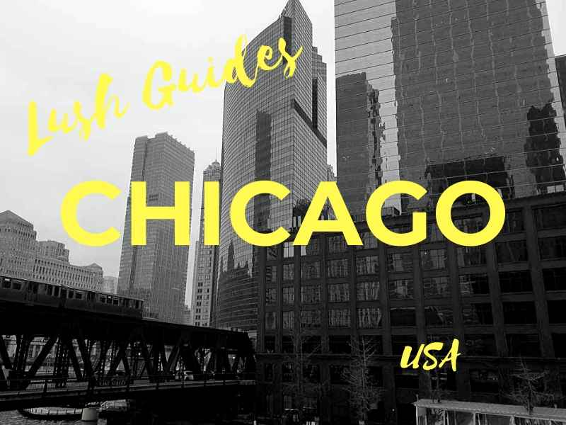 Lush Guide to the Best Bars in Chicago