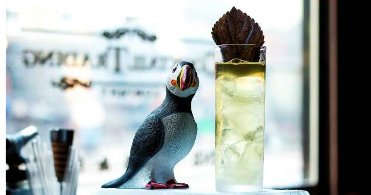 Mizuwari's Downfall by The Cocktail Trading Co. – cocktail recipe