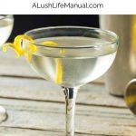 Gin Martini - Pinterest
