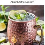 Moscow Mule 3