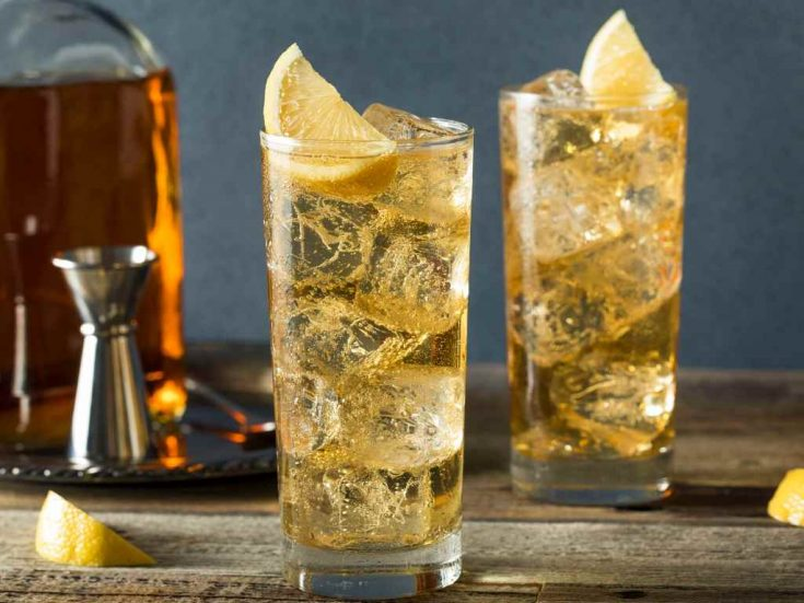 Whisky Highball - Cocktail Recipe