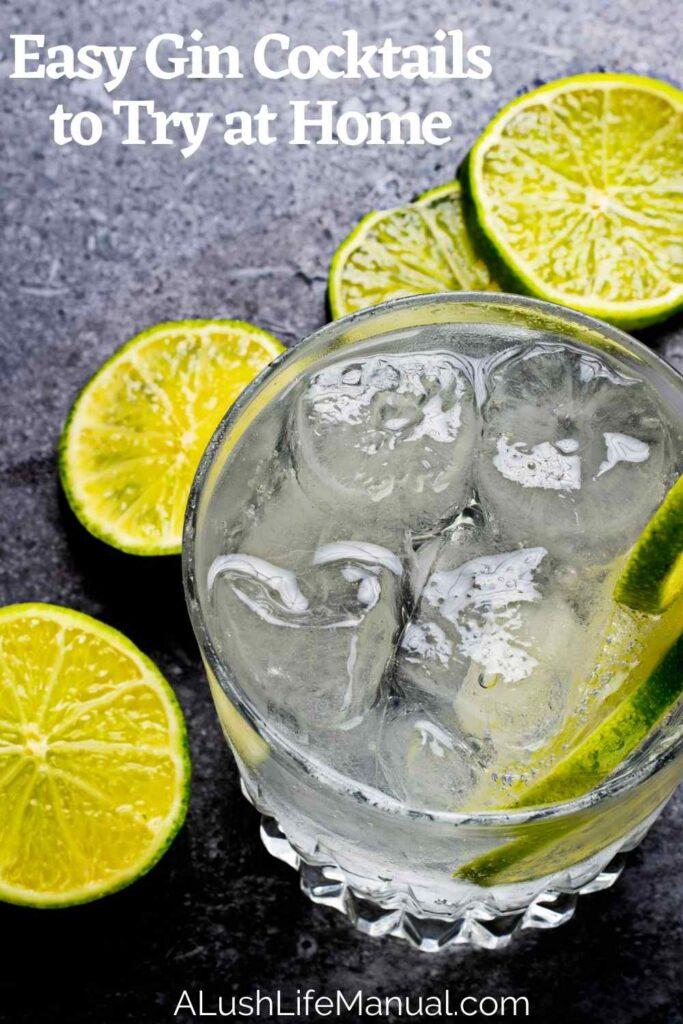 Easy Gin Cocktails - Pinterest