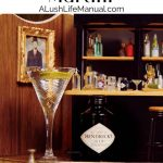 Hendrick's Gin Martini - Pinterest3