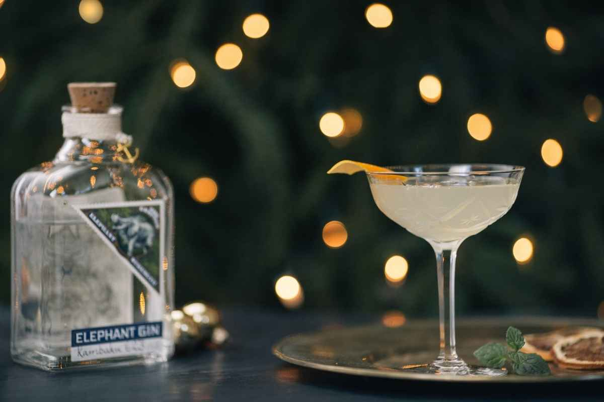 How to Make the Elephant Gin Dzombo Spritz