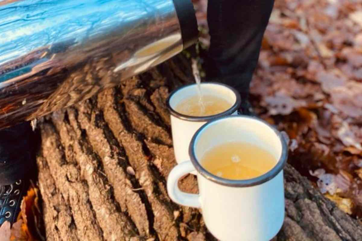 How to Make the Avallen Hot Toddy