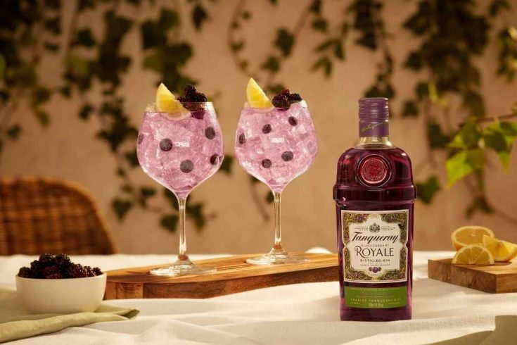 Tanqueray Blackcurrant Royale and Tonic