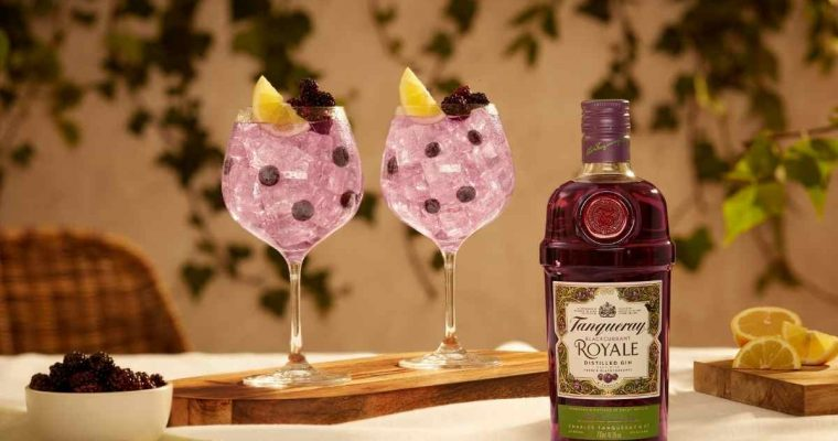 How to Make the Tanqueray Blackcurrant Royale Gin and Tonic