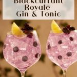 Tanqueray Blackcurrant Royale and Tonic - Pinterest (1)