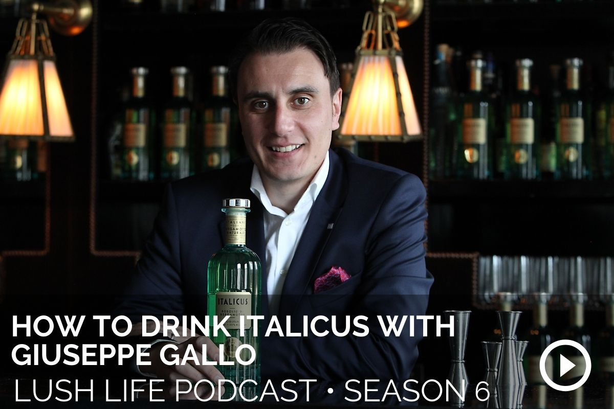 How to DRINK ITALICUS With Giuseppe Gallo