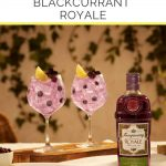 How-to-Drink-Tanqueray-Blackcurrant-Royale-Pinterest