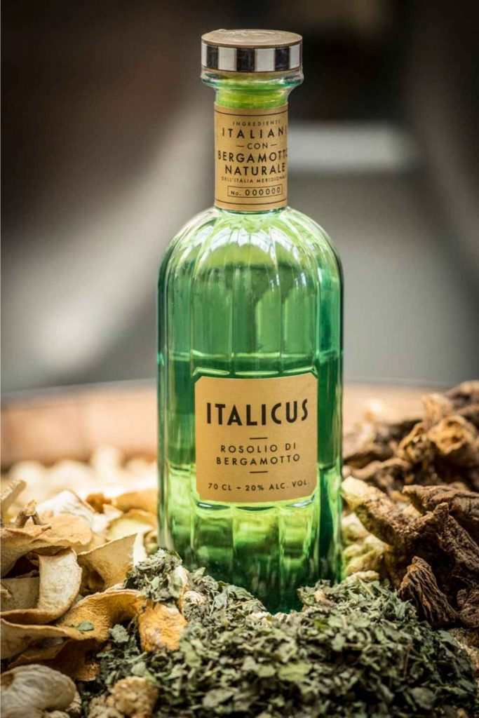 Italicus 1