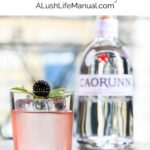 Caorunn Gin's Celtic Remedy - Pinterest