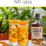 How-to-Drink-Cabal-no.-1513